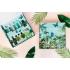 Jungle Beauty Adventure Box